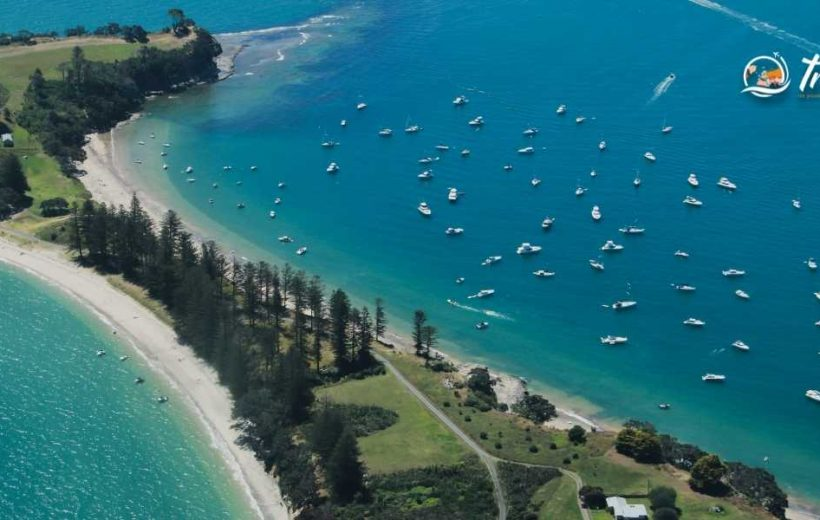 Discover Auckland City in 05 Days